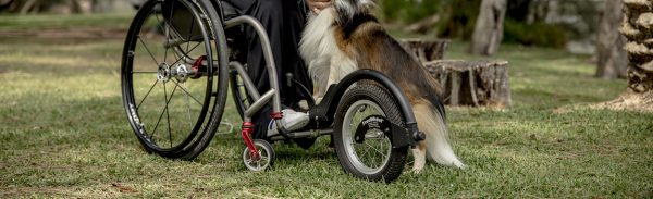 Freewheel on wheelchair in park